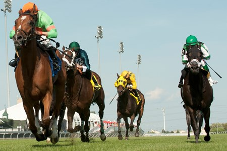 Jockey Eurico Da Silva guides Songs and Laughter (green silks orange cap) to victory in the 2016 Bold Ruckus Stakes.
