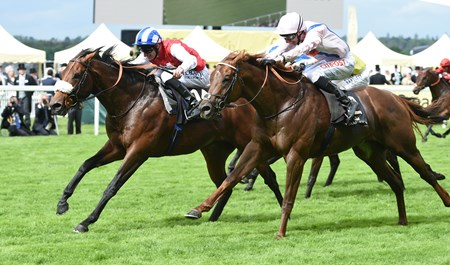 Profitable, with jockey Adam Kirby, wins the King's Stand Stakes at Royal Ascot June 14, 2016.