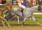 Cupid wins July 16 Indiana Derby