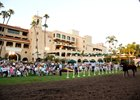 Barretts paddock sale at Del Mar