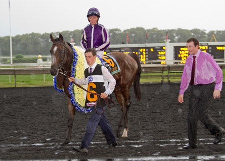 HIGHLAND REEL and jockey Seamie Heffernan win the Secretariat Stakes at Arlington Park on August 15, 2015.