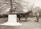 Bull Lea, with his statue, at Calumet Farm