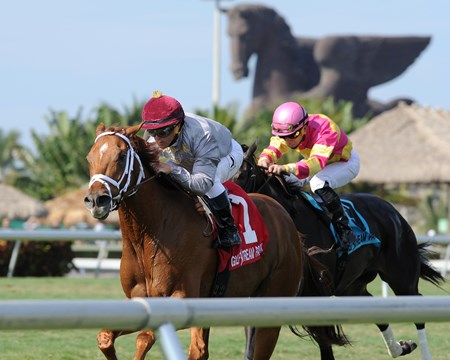 Sandiva wins the Marshua's River Stakes (gr. 3) at Gulfstream Park on January 9, 2016.