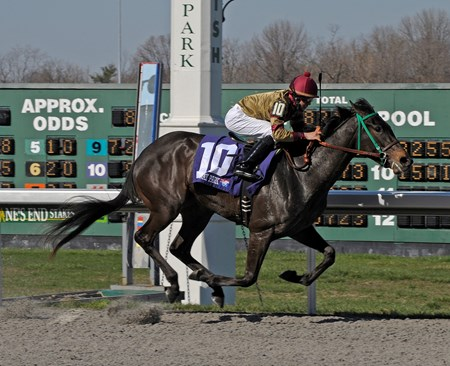 Hot Cha Cha wins the Bourbonette Oaks (gr. III) Lane's End stakes day at Turfway Park on March 21, 2009.