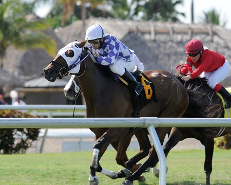 Gentlmens Agrement wins race 7 at Gulfstream Park July 10.