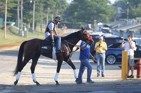 Nyquist with exercise rider Jonny Garcia makes his way off the track at Monmouth Park in Oceanport, New Jersey on Thursday morning July 28, 2016.