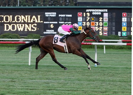 LONG ON VALUE wins The 7th Running of the Jamestown Stakes on July 6, 2013 Purse $50,000