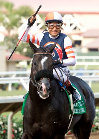 Midnight Storm Takes Streak Into Del Mar Mile Bloodhorse