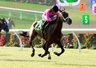 Monster Bea Seeks Del Mar Stakes Double