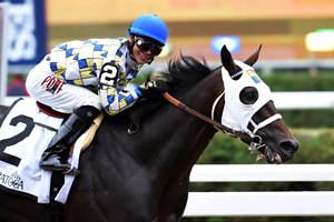 Laoban captured the 2016 Jim Dandy Stakes