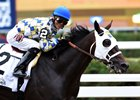 Laoban Targets Travers; Mohaymen Possible