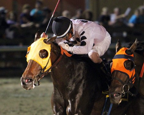 Louisiana Premier Night Set For Delta Downs Bloodhorse