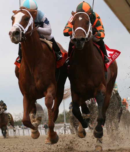 In a thrilling stretch duel El Padrino (left) with Javiar Castellano aboard outruns Mark Valeski and jockey Rosie Napravnik to win the 39th running of the Grade II Risen Star Stakes at Fair Grounds.
