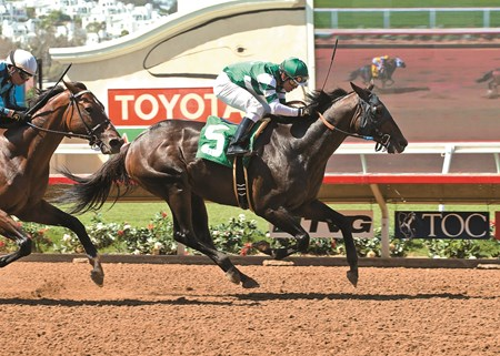 Hronis Racing's Hard Aces and jockey Santiago Gonzalez win the Grade III $100,000 Cougar II Handicap Sunday, July 24, 2016 at the Del Mar Thoroughbred Club, Del Mar, CA. ©Benoit Photo