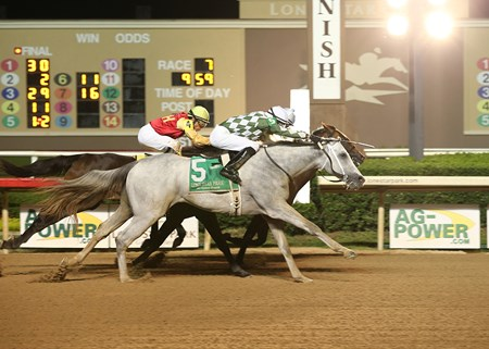 Shaded wins the 2016 Texas Thoroughbred Futurity