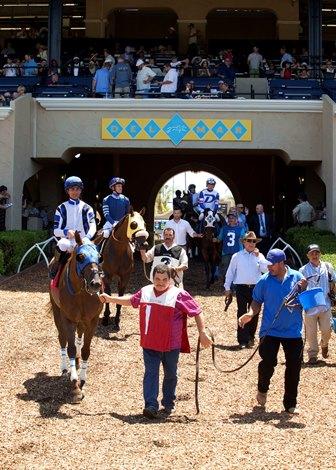 Del Mar To Cut Race Dates Open Later In 2017 Bloodhorse