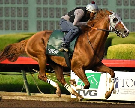 California Chrome - Los Alamitos, July 9, 2016