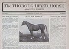 The Thoroughbred Horse Assoication Bulletin Volume 1 February 1917