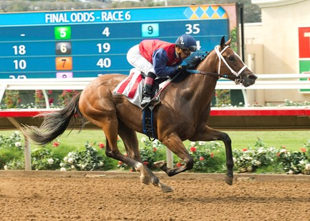 Miss Sunset Maiden Win, Del Mar, July 30, 2016