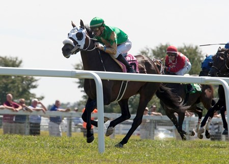 Seneca Destiny (No. 8, white blinkers, green silks) winning a starter-allowance race last Sept. 16 at Kentucky Downs. Seneca Destiny went on to finish second in the Claiming Crown Tiara at Gulfstream Park.