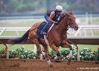 Beholder worked five furlongs in :59 1/5 at Del Mar on July 24