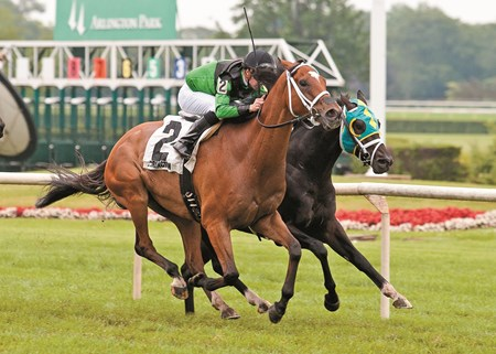 The Pizza Man winning The Stars and Stripes Stakes at Arlington International on July 11, 2015 with Florant Geroux up.