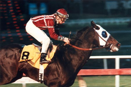 King Glorious won 7 stakes races, including the grade I Hollywood Futurity (shown).