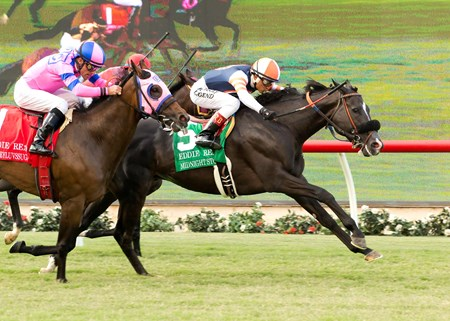Midnight Storm, with jockey Rafael Bejarano and second from left, wins the $250,000 Eddie Read Stakes (gr. II) Sunday, July 17, 2016 at Del Mar Thoroughbred Club, Del Mar CA.