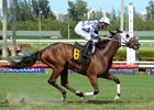 Gentlmens Agrement wins July 10 at Gulfstream; Little Mike fifth