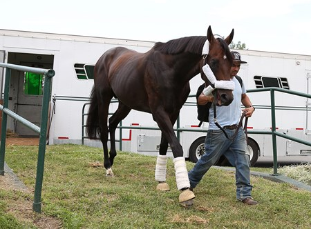 Preakness Stakes Champion Exaggerator arrives at Monmouth Park in Oceanport, New Jersey on Thursday July 28, 2016 with groom Enrique Morales.