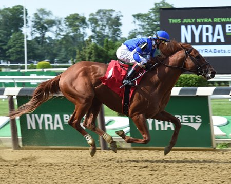 Summer Revolution wins his debut at Belmont Park