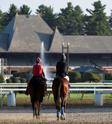 Undefeated champion filly Songbird goes out for exercise Friday morning at the Saratoga Race Course Friday July 23 2016 in Saratoga Springs, N.Y.
