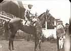 Gallant Fox after winning 1930 Kentucky Derby