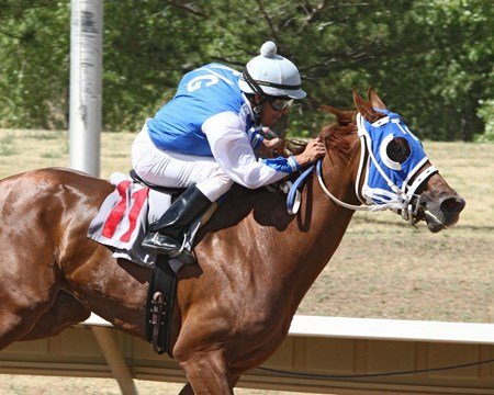 A J's Grand wins the 2016 CTBA Breeders Oaks