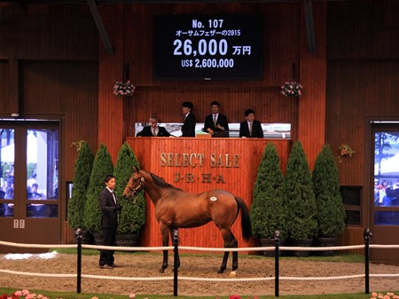 Hip 107 is a colt by Deep Impact out of Awesome Feather and brought the overall highest price of 260,000,000 Yen ($2,600,000) at the JRHA Select Sale 2016 Yearling Session.