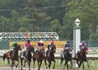 The Haskell field the 1st time by at Monmouth Park on July 31, 2016.