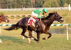 Consistent Just Jack Set for Maryland Million