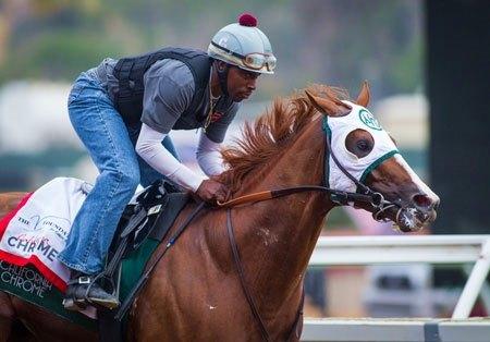 California Chrome Brilliant In Del Mar Breeze Bloodhorse