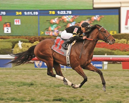 Long On Value and jockey Joel Rosario wins the Grade III Canadian Turf Stakes at Gulfstream Park on February 21, 2015.