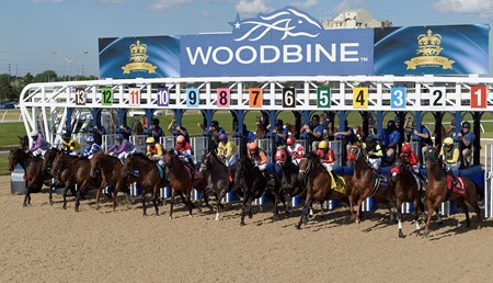 The start of the July 3 Queen's Plate at Woodbine