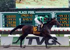 Exaggerator, with Kent Desormeaux, wins the 49th Running of The Haskell Invitational (GI) at Monmouth Park on July 31, 2016.