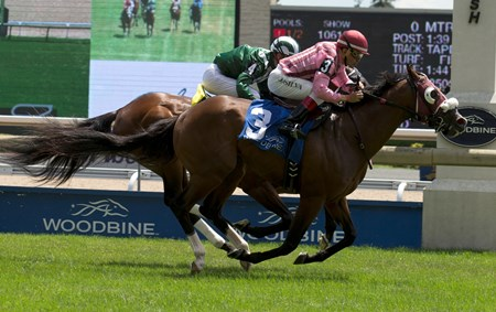 Jockey Eurico Da Silva guides Passion for Action to capture the $200,000 Highlander Stakes for owner Ben Hutzel and trainer Michael De Paulo. Toronto Ont.  July 3, 2016 at Woodbine Racetrack.
