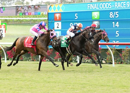 Midnight Storm, with jockey Rafael Bejarano and second from left, outleg Ashleyluvssugar, with Gary Stevens and far left, and Si Sage, with Victor Espinoza and right, to win the $250,000 Eddie Read Stakes (gr. II) Sunday, July 17, 2016 at Del Mar Thoroughbred Club, Del Mar CA.