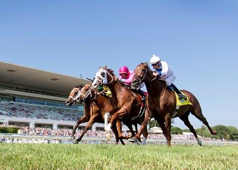 Greengrassofyoming Wins Stars And Stripes Bloodhorse