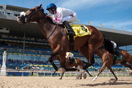 Jockey Jesse Campbell guides Caren to victory in the $250,000 Bison City Stakes at Woodbine Racetrack July 10, 2016 at Woodbine Racetrack.
