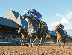 Frosted with jockey Joel Rosario wins the 89th running of the Whitney Saturday August 6, 2016 at the Saratoga Race Course in Saratoga Springs, N.Y. .  Photo by Skip Dickstein