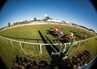 Kentucky Downs Surpasses Wagering Records