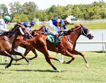 Undulated wins race 5 at Laurel Park Aug. 7.