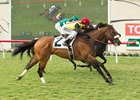 Sobradora Inc wins the Osunitas Stakes