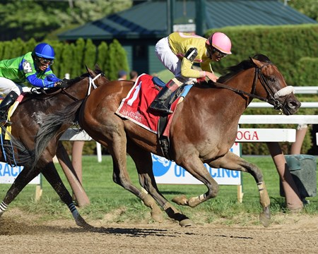 Royal Posse wins the 2016 Alydar Stakes.